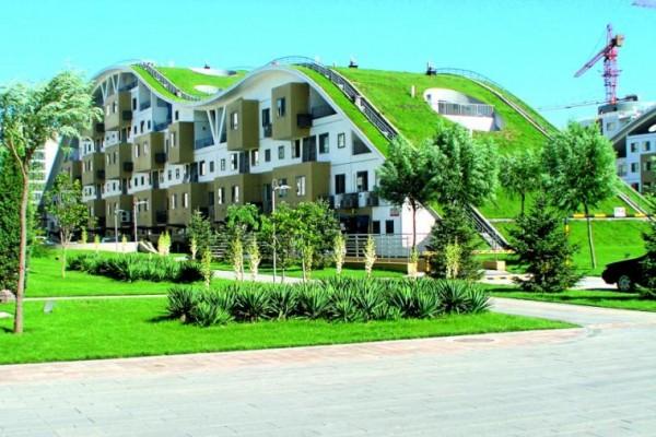 Коммерческая недвижимость в экологически чистых зонах